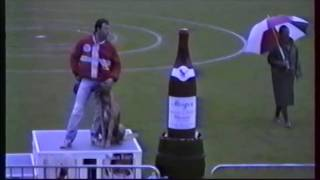 1997 Didier Gobert et Delta du Boscaille Finale Ring Villefranche 1ère partie