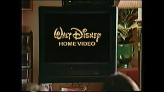 The Walt Disney Company Empire - From Now On