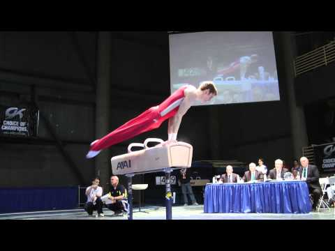 Ty Echard - Pommel Horse - 2012 Winter Cup Finals