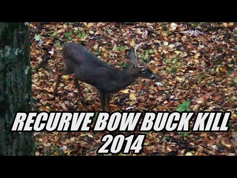 Recurve Bow Deer Hunting Archery Buck 2014