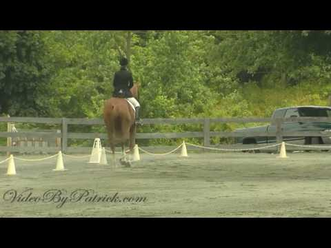 Katherine Nelson on Beloved MRF, MFS, Heavenly Waters Dressage, 6/20/2010 Video