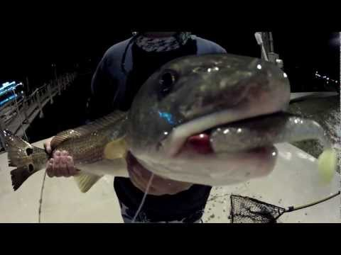 West Florida Fishing - Ep. 6 - Fishing the Flats Pt. 1