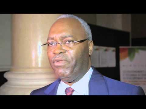Interview Hugues Ngouelondele, Mayor of Brazzaville at the UCLG World Council in Paris 2015