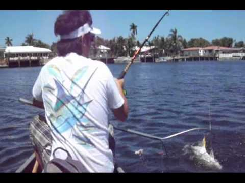 Jack Fishing In Fort Lauderdale (watch the chicken)  - Ned's Fishing Channel