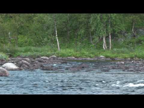 териберка рыбалка на реках и озерах