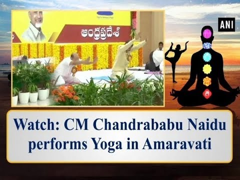 Watch: CM Chandrababu Naidu performs Yoga in Amaravati - Andhra Pradesh News