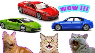 Learn colors for baby | learn colours with cars