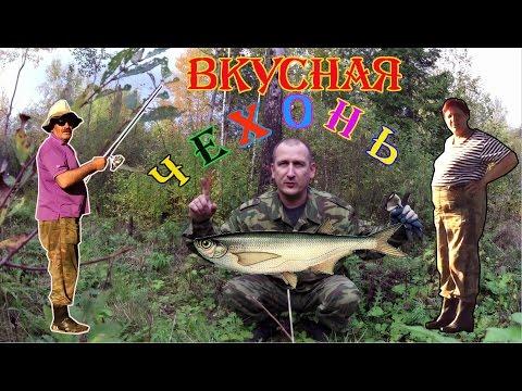 рыбалка в конце мая на каме