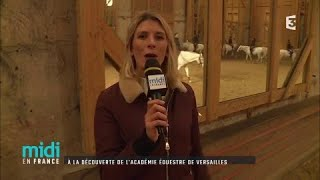 la dcouverte de lacadmie questre de Versailles