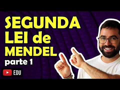 Segunda Lei de Mendel (parte 1) - Aula 10 - Módulo 2 (Genética) - Professor Guilherme