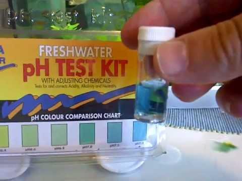 Tutorial ph test kit on 50 liter aquarium youtube for Fish tank test kit
