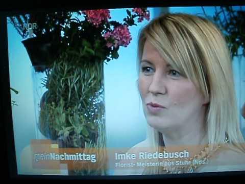 Magnettöpfe Für Blumen & Deko Von Kalamitica Im NDR