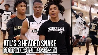 The Atlanta Celtics GO OFF in 1st Adidas Session! 3 Headed Snake Combine for 180 POINTS