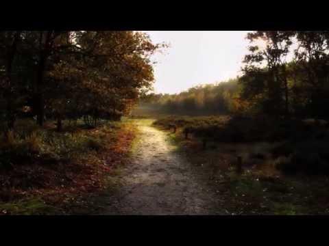Robert Burns - Laddie, Lie Near me