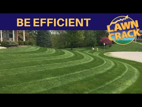 Limit the Services you Offer to Make more Money 💲💲💲 | Lawn Care Tips and Advice from LawnCrack