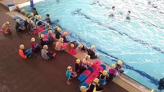 Latihan Swimming - FreeStyles