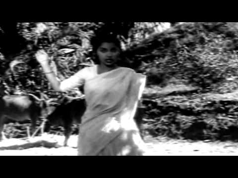 Kaagaz Ke Phool - Ek Do Teen Char Aur Paanch - Geeta Dutt &...