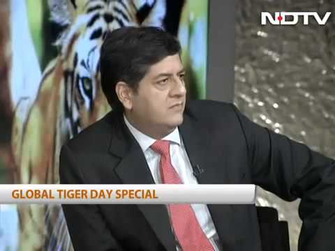 NDTV - Global Tiger Day special
