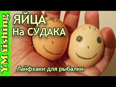 способ ловли яйца