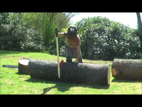 Woodchuck Dual - versatile strong log roller/lifter