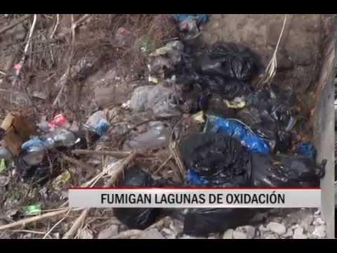 17/10/2014 - 13:12 FUMIGAN LAGUNAS DE OXIDACIÓN