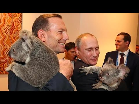 G20 Brisbane Summit, 2014 | Putin's Q&A following the G20 summit | Australia