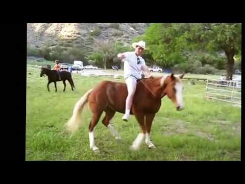 2013 Funniest Horse Video Contest Winners video