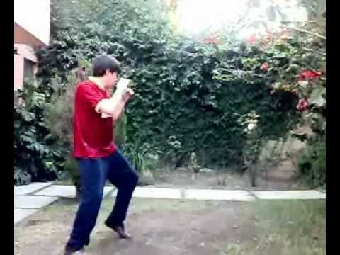 Savate kicks Image 1