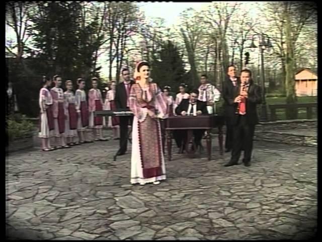 Mirela ZISU