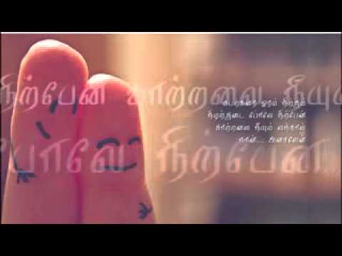 Tamil Cute Love Song video