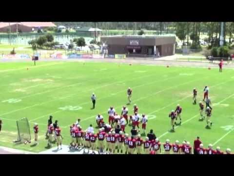 #4 Justin Baldwin - OLB Hoke County High School Raeford, NC