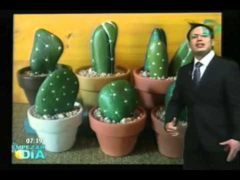 Macetas decoradas con piedras que simulan ser cactus for Plantas decoradas con piedras