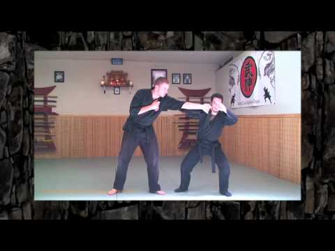 Kamae Lesson - Ninjutsu - Bujinkan - Basics of Ninja Training Video Blog Image 1