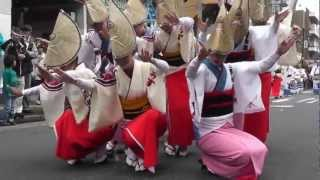 "Japanese Traditional Arts ""AWA DANCE"""