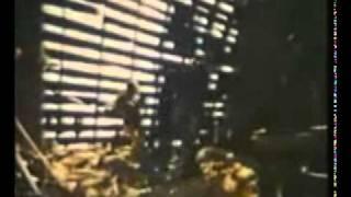 Northville Cemetery Massacre (1976) trailer (Cannon Films)