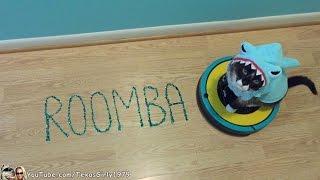 #SharkCat  Loves  #ROOMBA!  Cat on iRobot vacuum writes Roomba  | TexasGirly1979