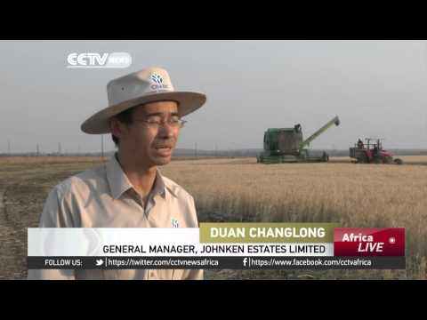 China-Africa cooperation delivers on agricultural advancements
