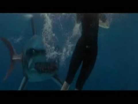muerte de susan 'sunsan's dead' (deep blue sea) youtube