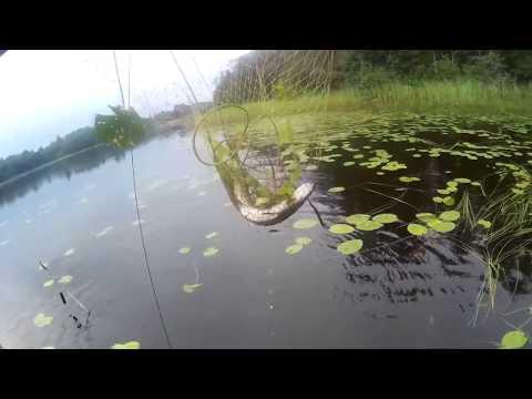 на майские на рыбалку