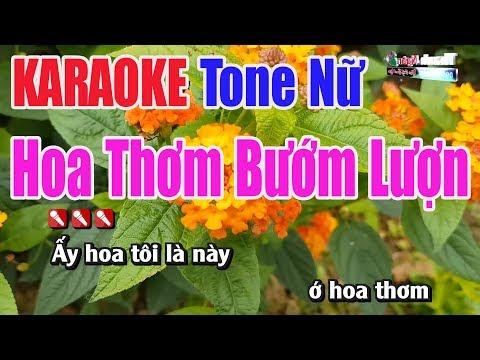 Hoa Thơm Bướm Lượn KARAOKE | Tone Nữ | Nhạc Sống Thanh Ngân #1