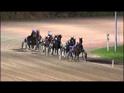 Vidéo de la course PMU PRIX BIANCA BIJKERK (ELITE CHALLENGE)