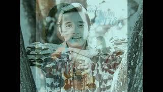 Lk Phút Đầu Tiên - Mấy Nhịp Cầu Tre ( Nguyễn Hưng,Hoàng Lan,Ái Vân,Elvis Phương )