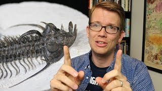 Eyes Made of Crystal? - Trilobites are Bizarre