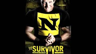 WWE Survivor Series 2010 my predictions