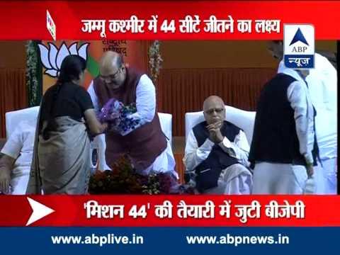 BJP president Amit Shah on 'Mission Kashmir'