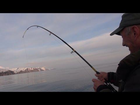 рыбалка на камчатке видео о рыбалке