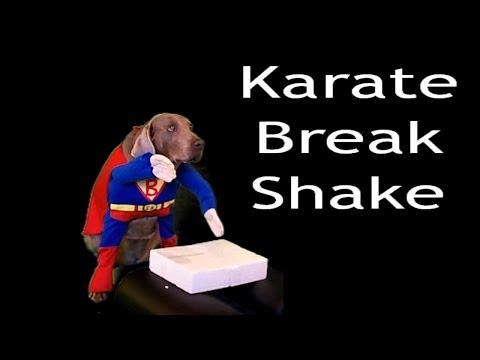 Karate Break Shake Gangnam Style it aint