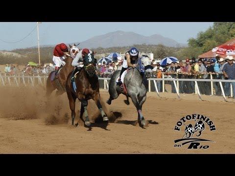 Carreras de Caballos  Hipodromo de Rayon