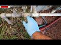 Limpieza rapida del radiador [video]