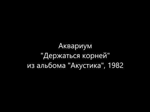 Аквариум, Борис Гребенщиков - Держаться Корней
